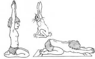 Упражнения для спины видео уроки
