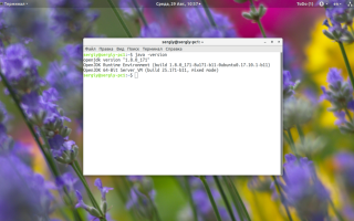 Запуск java приложений linux