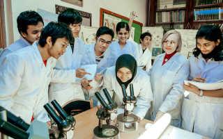 Срок обучения в медицинском университете