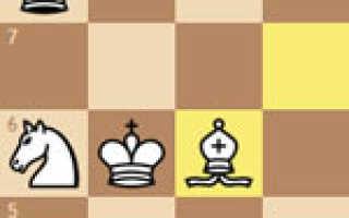 Правила игры в шахматы для начинающих видео