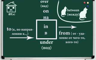 Полиглот английский 8 урок смотреть