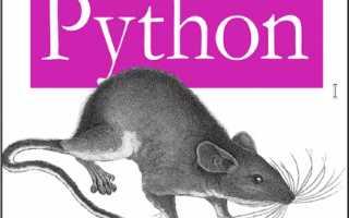 Книги по языку питон