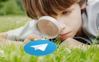 Как узнать кто заходил в телеграмме