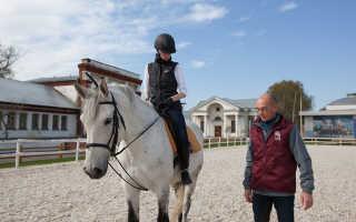 Уроки верховой езды для начинающих в москве