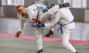 Видео уроки по рукопашному бою