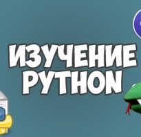 Питон язык программирования с нуля видеокурс