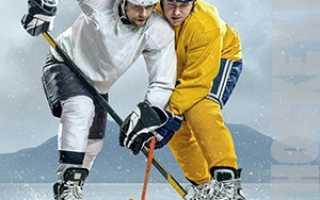 Уроки игры в хоккей с шайбой