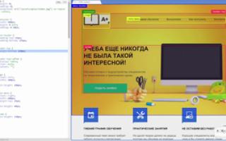 Веб программирование курсы
